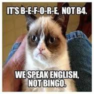 Super funny love memes for him humor grumpy cat ideas Grumpy Cat Quotes, Funny Grumpy Cat Memes, Cat Puns, Funny Animal Jokes, Animal Memes, Funny Cats, Funny Animals, Funny Memes, Hilarious
