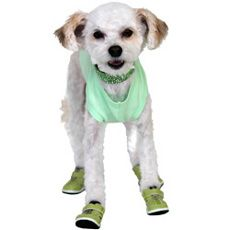 """DoggieVogue, Inc. Clothes, shoes, (yes, shoes!!) also """"jewelry"""" available. My girl wants these!"""