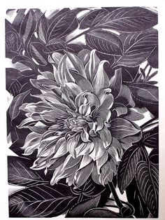 "John Farleigh (English, 1900-1965) - ""Dahlia"", 1948 - Wood engraving"