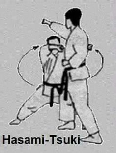 Guidelines that may help you Greatly improve Your information of martial arts styles Karate Kata, Shotokan Karate, Karate Styles, Okinawan Karate, Goju Ryu, Kyokushin, Martial Arts Styles, Martial Arts Workout, Dojo