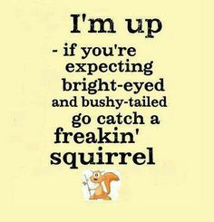 Bright eyed and bushy tailed happens later. LOL At least I'm up! Great Quotes, Me Quotes, Funny Quotes, Funny Memes, Hilarious, Morning Humor, I Love To Laugh, Just For Laughs, Laugh Out Loud