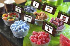 My son's minecraft partys, old boy :) Minecraft Cake, Minecraft Party, Son Love, Hammocks, Candy Buffet, Raspberry, Decorations, Mugs, Fruit