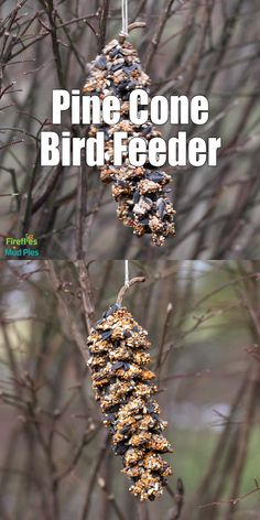 garten videos This DIY Pine Cone Bird Feeder is simple for kids to make at home or in the classroom, and can be made with or without peanut butter! Continue reading for full directions, supplies, tips, and tricks.