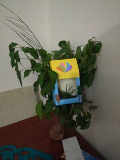 #okulöncesi #anaokulu #geridönüşüm #ekookul #recycle #evödevi #kuşevi #birdhousesof