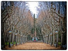 Parque Miguel Servet, Huesca Vineyard, Outdoor, Parks, Outdoors, Vine Yard, Vineyard Vines, Outdoor Living, Garden