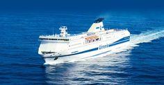 A bordo della flotta Tirrenia benvenuti gli amici a quattro zampe