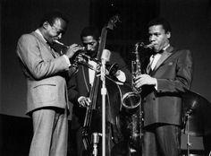 Jazz Artists, Jazz Musicians, Miles Davis, Greys Anatomy Memes, Photo D Art, Walter White, Billie Holiday, Thomas Brodie Sangster, Travel Design