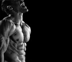 The 21-Day Shred Exercise and Diet Program: Exactly how it sounds.