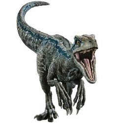 This render was found on the cover of a Jurassic World Mega Sticker book, where it also has a Stegosaurus and Stiggy the Stygimoloch. Fallen Kingdom: Blue the Velociraptor Blue Jurassic World, Jurassic World Fallen Kingdom, Raptor Dinosaur, Dinosaur Art, Falling Kingdoms, Jurassic Park Raptor, Jurassic Movies, Jurrassic Park, Prehistoric Creatures