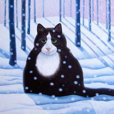 Vicky Mount...looks like my cat Oreo! lol