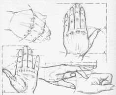 """Après avoir vu la structure osseuse et """"musculaire"""" de la main (Je mets des guillemets car il s'agit plus de tendons que réellement des muscles qui officient dans les différentes articulations de l..."""