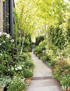 Bette Midler's Manhattan Penthouse and Lush Garden. Shade-loving plants such as foxgloves, hostas, spirea, and English and Boston ivies grow on a terrace. Lush Garden, Terrace Garden, Garden Paths, Garden Landscaping, Home And Garden, Garden Shade, Landscaping Ideas, Small Space Gardening, Small Gardens