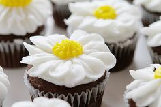 Two ways to pipe a daisy from buttercream frosting! Both methods are fun and easy and make the most beautiful flower! Two ways to pipe a daisy from buttercream frosting! Both methods are fun and easy and make the most beautiful flower! Garden Cupcakes, Daisy Cupcakes, Fun Cupcakes, Cupcake Cakes, Mocha Cupcakes, Gourmet Cupcakes, Strawberry Cupcakes, Velvet Cupcakes, Easter Cupcakes