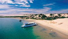A day out on the Spirit of the Coorong is only a 40 min drive south from Mulberry Lodge. Rated 1 of the best 100 things to do in Australia.