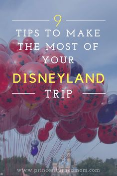 How to Make the Most of your Disneyland Trip