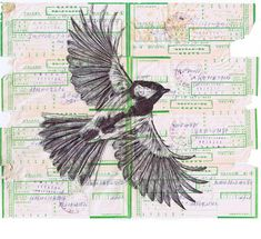 Bic biro bird drawing collection by Mark Powell - ego-alterego.com
