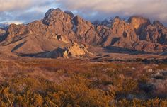 In southern New Mexico, surrounding the city of Las Cruces in the Río Grande's Mesilla Valley, five iconic mountain ranges rise above Chihuahuan Desert grasslands. These mountain ranges and lowlands...