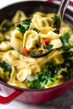 Spinach Tortellini en Brodo (Italian Spinach Tortellini Soup) - Skinnytaste Spinach Tortellini en Brodo (in broth) is an Italian soup made with spinach and cheese tortellini and vegetables in a light broth. Cheese Tortellini Soup, Spinach Tortellini Soup, Chicken Tortellini, Spinach Soup, Spinach And Cheese, New Recipes, Soup Recipes, Cooking Recipes, Healthy Recipes