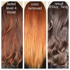 14 Best Hair Color Images Hair Coloring Hair Colors Haircolor