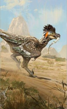 'Roadrunner' inspired Saurornitholestes sullivani by Jonathan Kuo