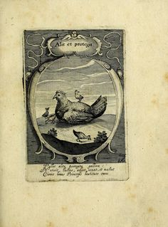 Emblemata politica : in aula magna Curiae Noribergensis depicta, quae sacra viritutum suggerunt monita prudenter administrandi fortiterque defendendi rempublicam by Iselberg, Peter, ca. 1568-ca. 1630; Remus, Georg, 1561-1625; Duke University. Library. Jantz Collection