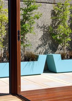 Turquoise planters with Ginkgo trees and red grasses, sandstone paving and hardwood deck