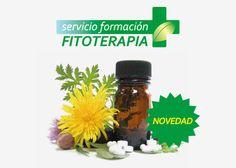 ¿Quiéres conocer el uso de las #plantasmedicinales?  Disponible el Curso de Formación en #Fitoterapia para #Farmacéuticos.