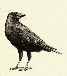 The Crow by loysa on DeviantArt Crow Art, Raven Art, Bird Art, The Raven, The Crow, Animal Espiritual, Rabe Tattoo, Posca Art, Bild Tattoos