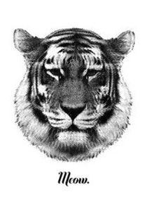 Tiger says Meow by Riikka Kantinkoski - through RKdesign Bigcartel