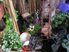 Close up of my fairy garden I created for my balcony. Hand made twig chair and ladder.