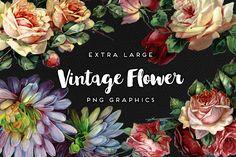 Large Vintage Flower Graphics No. 1 – Avalon Rose Design