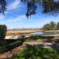 Your Myrtle Beach golf vacation will feature some of the world's most scenic and challenging courses. Play along the Intracoastal Waterway or with views of the Atlantic Ocean on greens designed by greats like Arnold Palmer, Greg Norman, and Jack Nicklaus. Caledonia Golf, Pawleys Island South Carolina, Myrtle Beach Attractions, Myrtle Beach Golf, Famous Architects, Beach Photos, Golf Courses, Things To Do, Country Roads