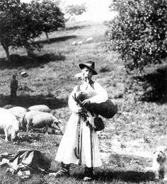 Dudáló kanász, Buják, 1933.