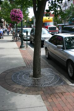 Half round half square tree grate with pavers in a downtown streetscape.