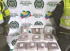 Noticias de Cúcuta: Policía Nacional se incauta de 4.7 kilos de marihu...