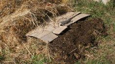 Steps for a No Dig Garden