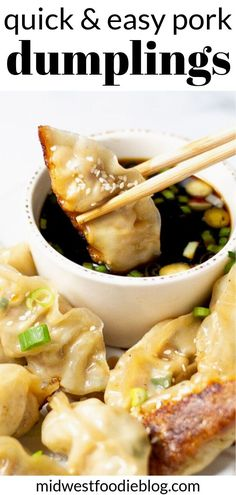 Pan Fried Pork Dumplings Midwest Foodie Simple satisfying and loaded with flavor these pork dumplings will have your family asking for seconds Theyre crispy yet tender. Pork Recipes, Asian Recipes, Cooking Recipes, Healthy Recipes, Ethnic Recipes, Cleaning Recipes, Japanese Food Recipes, Homemade Chinese Food, Healthy Food