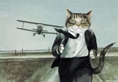 ana_lee: Movie Cats by Susan Herbert Cat North by Northwest funny art. North By Northwest, Gatos Cats, Fancy Cats, Beautiful Cats, Crazy Cats, Cool Cats, Cat Art, Pet Portraits, Neko