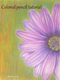 Painting a flower study in colored pencil. Step-by-step photos and detailed description. Super-simple, and looks lovely framed up as a gift.