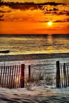 Virginia Beach- the north end of the beach where the locals go