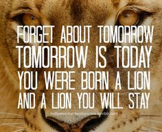 hollywood undead lion quote