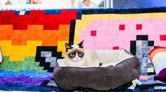 OMG GRUMPY CAT AT SXSW