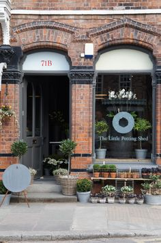 Gallery :: The Little Potting Shed