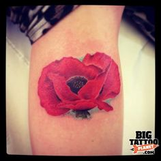 Mark Reed - poppy tattoo. Similar to mine with the blue outline. I love the realism in this without using harsh outlines.