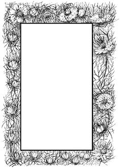 1000 Images About Pages Borders And Dividers On