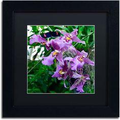 Trademark Fine Art Postman Butterfly on Orchid Canvas Art by Kurt Shaffer, Black Matte, Black Frame, Size: 16 x 16