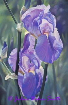 The Color Purple Fine Art Print of an Iris by ArtByJulene on Etsy, $15.00