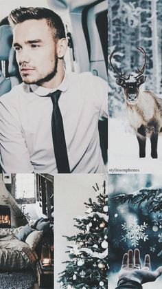 Read from the story wallpapers by (Monique Styles) with reads. Members Of One Direction, One Direction Photos, One Direction Memes, One Direction Background, One Direction Wallpaper, Beautiful One Direction, Winter Wallpaper, Liam James, High School Musical
