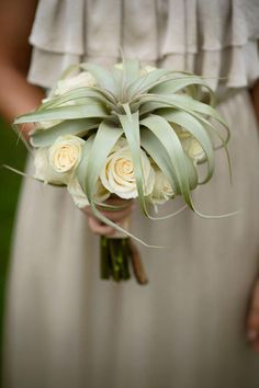 Bridal Bouquet with Tillandsia xerographica and white roses. #Wedding #Inspiration #Bouquet #Airplantsgr