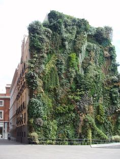 Living Vertical Garden @ Caixa Forum in Madrid by Patrick Blanc
